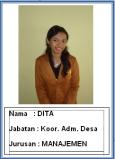 12 Dita